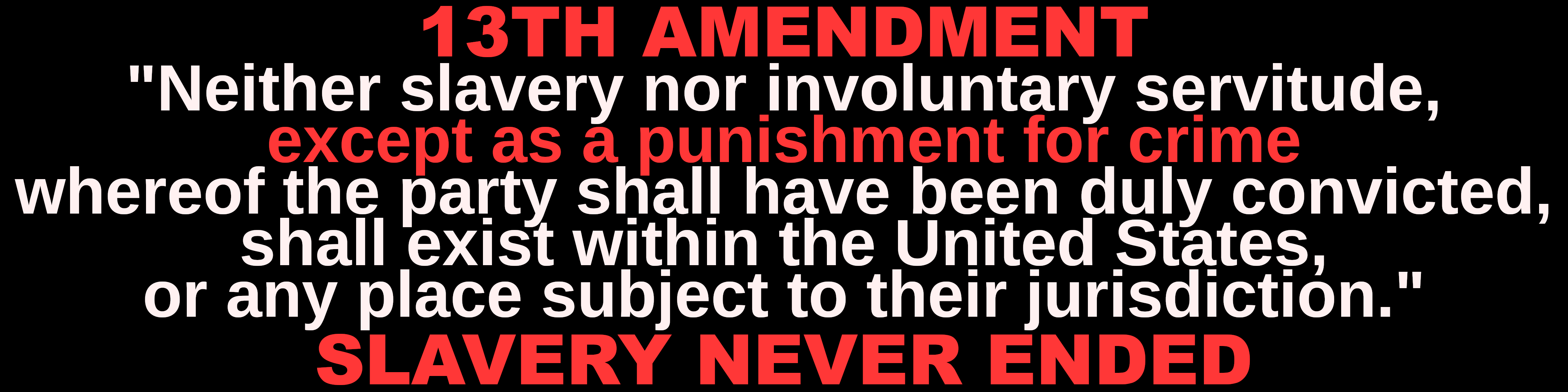 13th_Amendment_bumpersticker-1